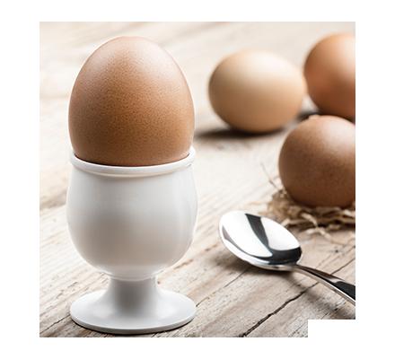 Fattura di Magia Nera semplice con l'uovo