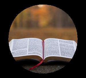 Oracolo Libro delle Risposte